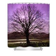 Village Green Tree Shower Curtain