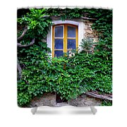 Vine Covered Stone House Shower Curtain