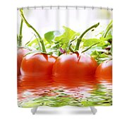 Vine Tomatoes And Salad With Water Shower Curtain