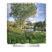 Vines And Trees Shower Curtain