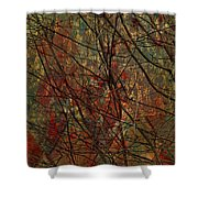Vines And Twines  Shower Curtain
