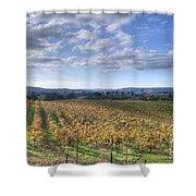 Vines In Fields Shower Curtain