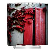 Vines On Red Shutters Shower Curtain