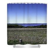 Vineyard Of Leelanau Michigan Shower Curtain