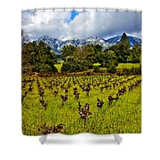 Vineyards And Mt St. Helena Shower Curtain by Garry Gay
