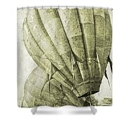 Vintage Ballooning IIi Shower Curtain