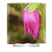 Vintage Pendant Shower Curtain