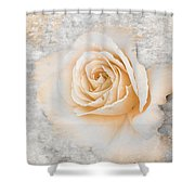 Vintage Rose II Shower Curtain