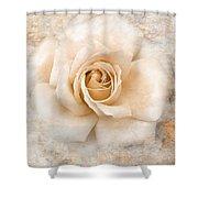 Vintage Rose V Square Shower Curtain