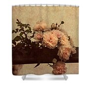 Vintage Roses Shower Curtain