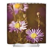 Vintage Violet  Shower Curtain