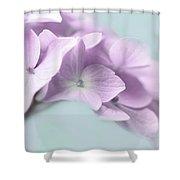 Violet Hydrangea Flower Macro Shower Curtain