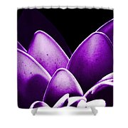 Violet Lotus Shower Curtain