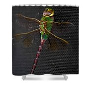 Violet Tail Damsel Shower Curtain