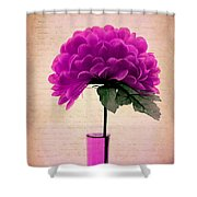 Violine Shower Curtain