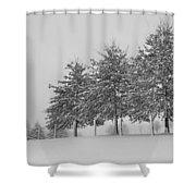 Virginia Snow Shower Curtain