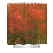 Vision Shower Curtain