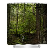 Vision Of Life Shower Curtain by Mike Reid