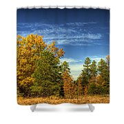 Visions Of Fall  Shower Curtain