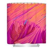 Vitamin E Crystal Shower Curtain
