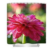 Vivid Floral Shower Curtain