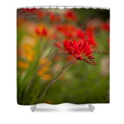 Vivid Points Shower Curtain