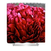 Vivid Red Shower Curtain