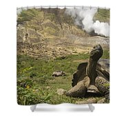 Volcan Alcedo Giant Tortoise Geochelone Shower Curtain