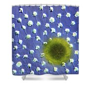Volvox Aurelia Shower Curtain