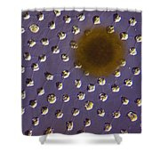 Volvox Sp. Algae Lm Shower Curtain