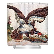 Vulture Attacking A Snake Shower Curtain