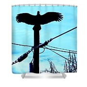 Vulture On Phone Pole Shower Curtain
