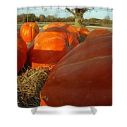 Wagon Ride For Pumpkins Shower Curtain