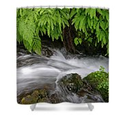 Wahkeena Falls One Shower Curtain