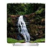 Waimea Valley Falls Shower Curtain
