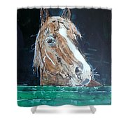 Waiting - Horse Portrait Shower Curtain