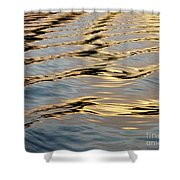 Wake Shower Curtain