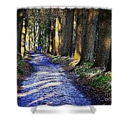 Walk On A Cold Autumn Day Shower Curtain