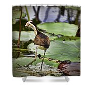 Walking On Water V3 Shower Curtain
