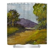 Walking Path Shower Curtain