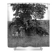 Wall Tree Shower Curtain