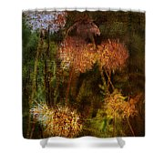 Wallflowers Of Dance  Shower Curtain