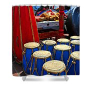 Walrus Drums Shower Curtain