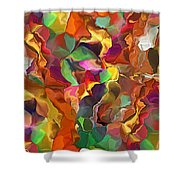 Wanderer Shower Curtain