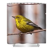 Warbler - Pine Warbler - Oh So Yellow Shower Curtain