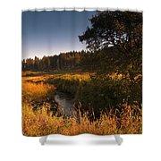 Warm Morning Sun. The Trossachs National Park. Scotland Shower Curtain
