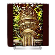 Warm Southern Welcome Shower Curtain