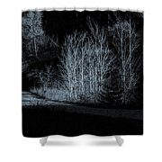 Warming Light On An Autumn Morning Shower Curtain