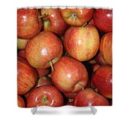 Washington Apples Shower Curtain