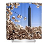 Washington Monument Cherry Trees Shower Curtain